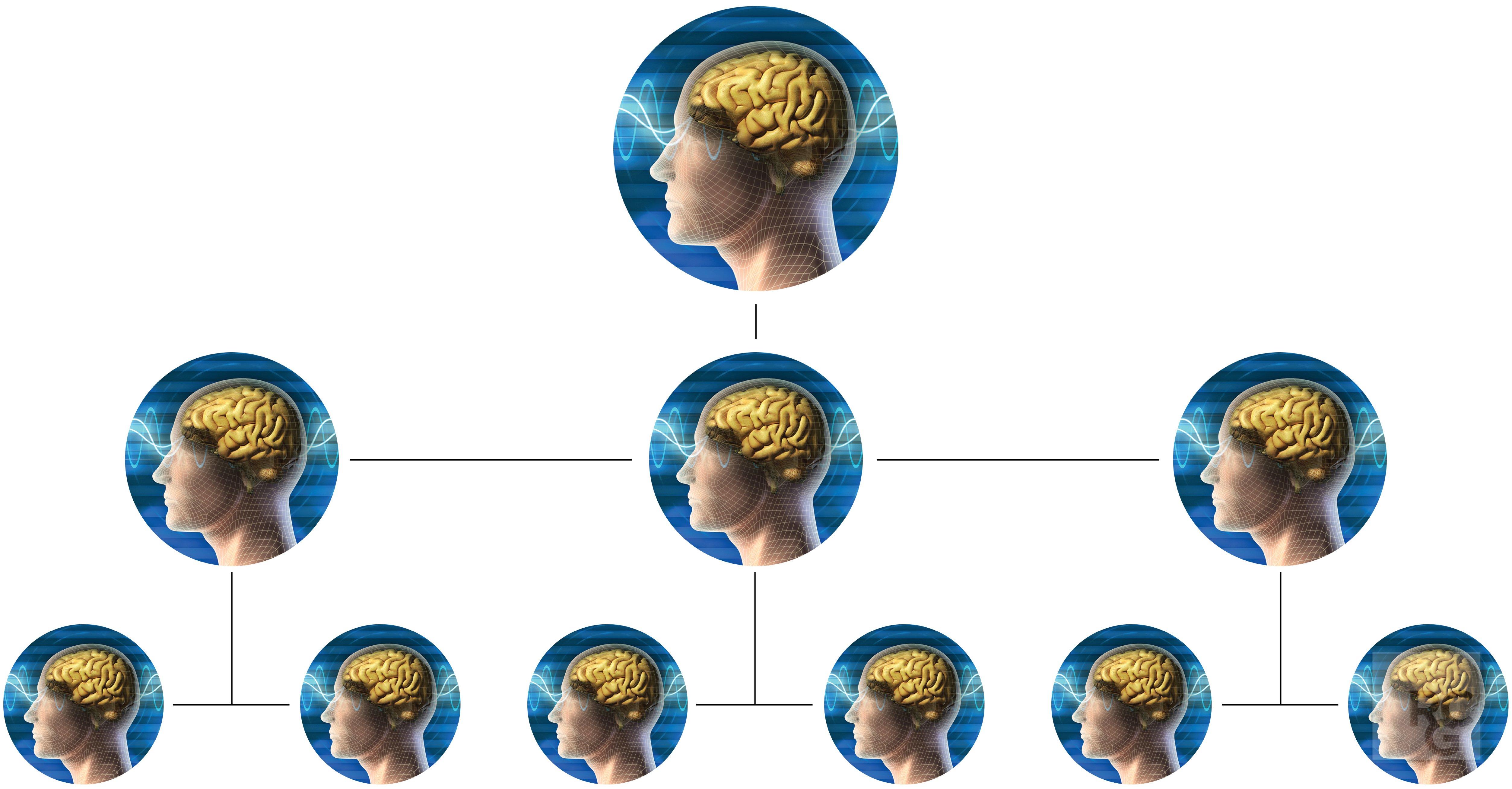 Network_of_Brains.png